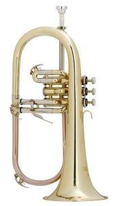 Schagerl Flugel Horn SLFL800