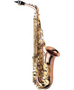 Yanagisawa AWO2 Bronze Professional Alto sax (A-WO2)