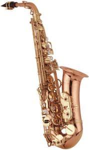 Yanagisawa AWO20 Professional Bronze Alto Sax (A-WO20)