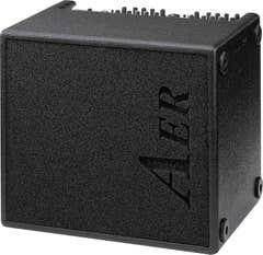 AER Domino2 100w Acoustic Guitar Amp