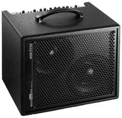 "AER Amp Three 2x8"" Bass Amp Combo"