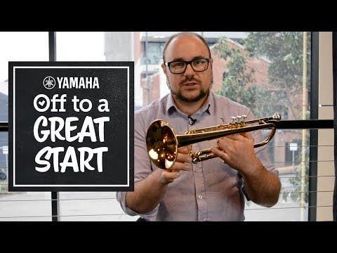 Yamaha YTR6335A professional standard weight trumpet (YTR-6335A)