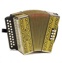 Hohner 2915 Vienna D/G 2-Row Diatonic Button Accordion - Black & Gold - One Only