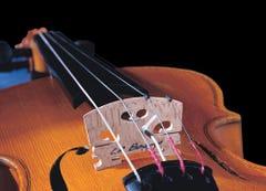 LR Baggs Violin Vibration Sensor Pickup
