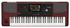 Korg PA1000 61-Note Performance Arranger Keyboard