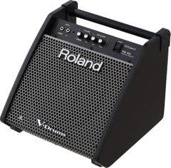 Roland PM100 80W Personal Drum Monitor (PM-100)