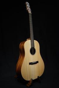 Maestro Project X X1-SD Dreadnought Acoustic Guitar w/Gigbag